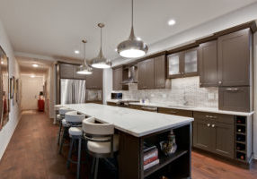 Ray-E-Park-Ridge-Kitchen-after-1